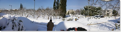 Snow Panoramic
